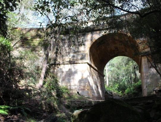 Miss B's trip to Lennox Bridge